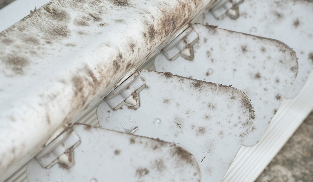 How to Clean a Moldy Window AC Unit